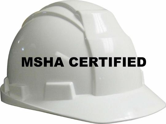 MSHA Logo (540x404)